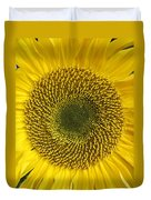 Here Comes The Sun.... Duvet Cover