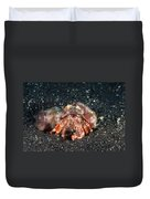 Hermit Crab With Anemone Duvet Cover