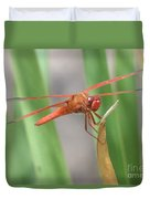 Hi Dragon Fly Duvet Cover