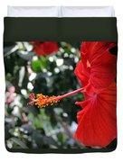 Hibiscus 2685 Duvet Cover