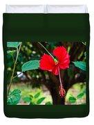 Hibiscus Rosa-sinensis / China Rose Flower Duvet Cover