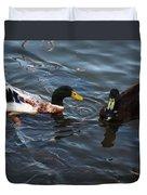 Hibred Ducks Swimming In Beech Fork Lake Duvet Cover