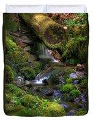 Hidden Brook Duvet Cover