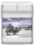 High Desert Snow Duvet Cover