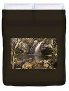 High Falls Talledega National Forest Alabama Duvet Cover
