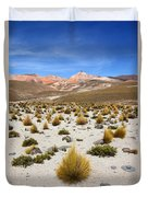 High In The Chilean Altiplano Duvet Cover