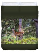 Highland Stag Duvet Cover