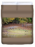 Hillside Of Canadian Geese Duvet Cover