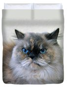 Himalayan Persian Cat Duvet Cover