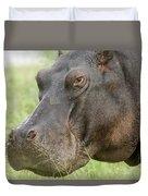 Hippopotamus Okavango Delta Botswana Duvet Cover