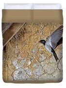 Hirondelle De Cheminee Hirundo Rustica Duvet Cover