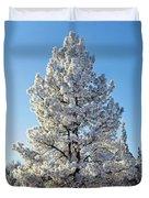 Hoar Frost Ponderos Pine Tree, Sundance Duvet Cover