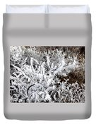 Hoarfrost 18  Duvet Cover