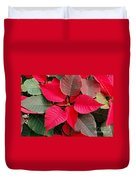 Holiday  Color Duvet Cover