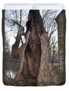 Hollow Tree At Mather Mill Duvet Cover