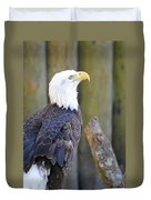 Homosassa Springs Bald Eagle Duvet Cover