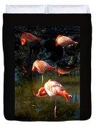 Homosassa Springs Flamingos 5 Duvet Cover