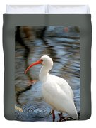 Homosassa Springs Ibis 1 Duvet Cover