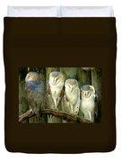 Homosassa Springs Snowy Owls 2 Duvet Cover