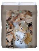 Homosassa Springs Squirrel 2 Duvet Cover