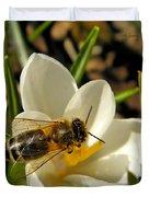 Honey Bee And Crocus Duvet Cover