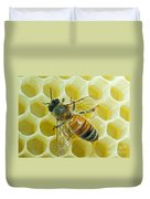 Honey Bee In Hive Duvet Cover