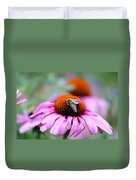 Honey Bee On A Pink Daisy Duvet Cover