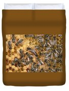 Honey Bee Queen And Colony On Honeycomb Duvet Cover