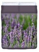 Honeybees On Lavender Flowers Duvet Cover
