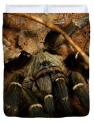 Hornback Baboon Spider Duvet Cover