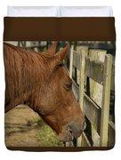 Horse 31 Duvet Cover