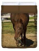 Horse 32 Duvet Cover