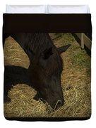 Horse 34 Duvet Cover