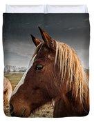 Horse Composition Duvet Cover