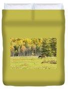 Horse Grazing In Field Autumn Maine Duvet Cover