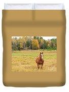 Horse In Field-fall Duvet Cover