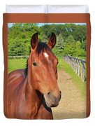 Horse In Stable Duvet Cover