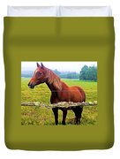 Horse In The Pasture Duvet Cover