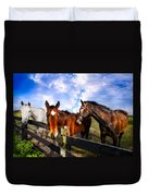 Horses At The Fence Duvet Cover