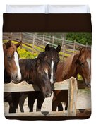 Horses Behind A Fence Duvet Cover