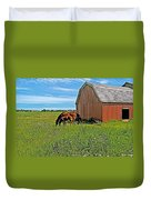 Horses By A Barn Along Confederation Trail-pei Duvet Cover