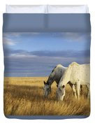 Horses Grazing In Cypress Hills Duvet Cover