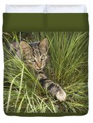 House Cat Hunting In Grass Germany Duvet Cover