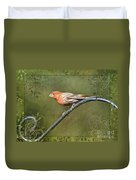 House Finch On Guard IIi Duvet Cover