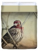 House Finch Two Duvet Cover