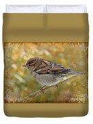 House Sparrow II Duvet Cover