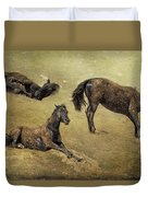 How A Black Horse Turns Brown - Pryor Mustangs Duvet Cover