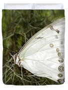 Huge White Morpho Butterfly Duvet Cover