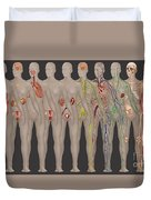 Human Systems In The Female Anatomy Duvet Cover