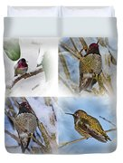 Humming Bird And Snow 4 Pack Duvet Cover